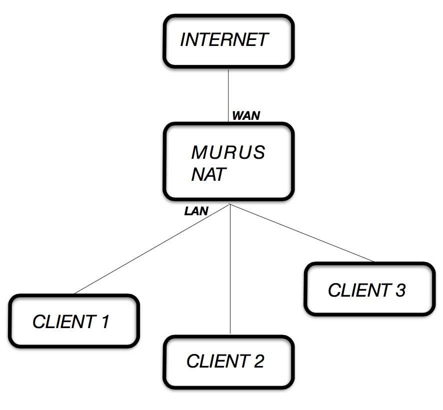 Online Murus Manual